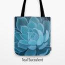 teal succulent
